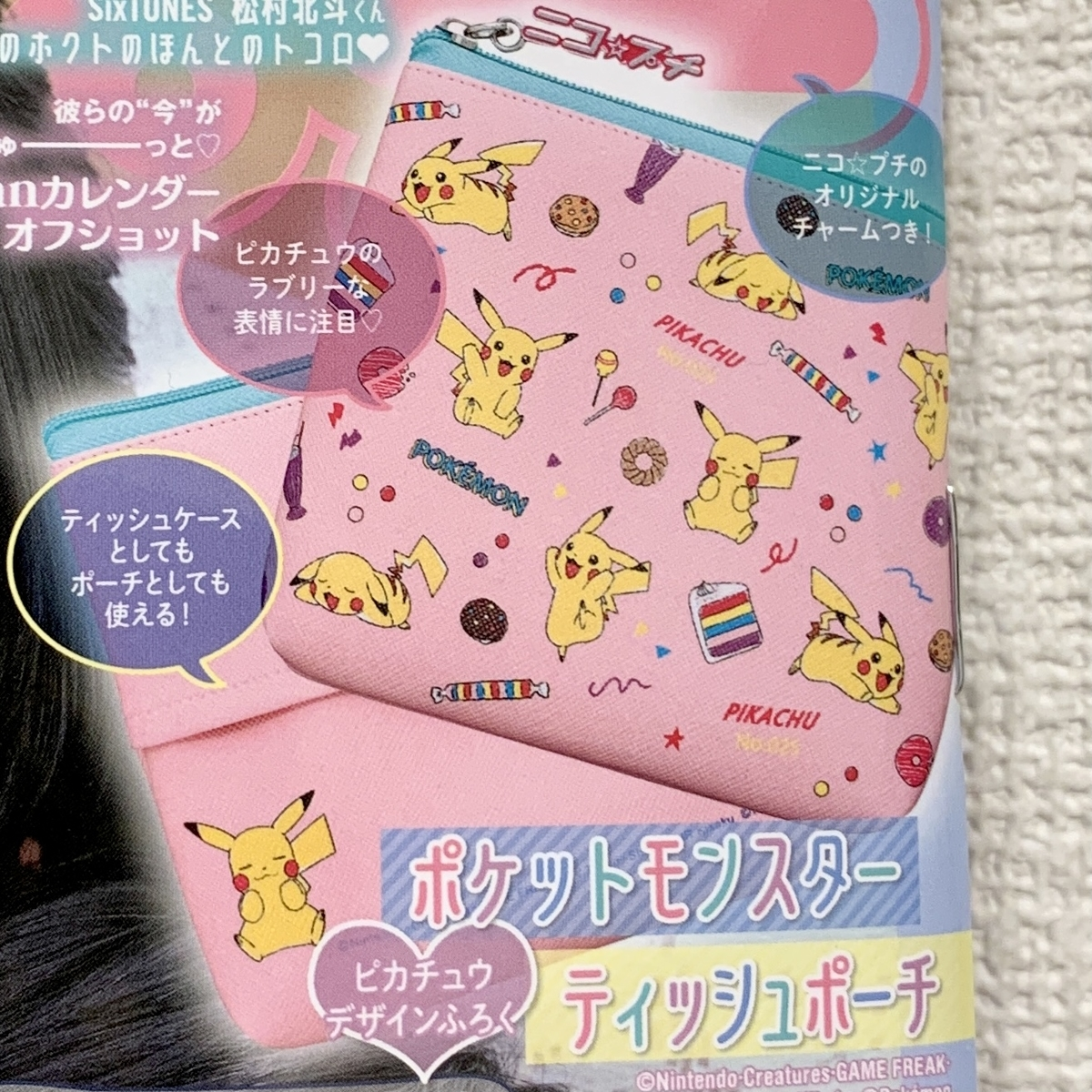 f:id:pikachu_pcn:20210222151816j:plain