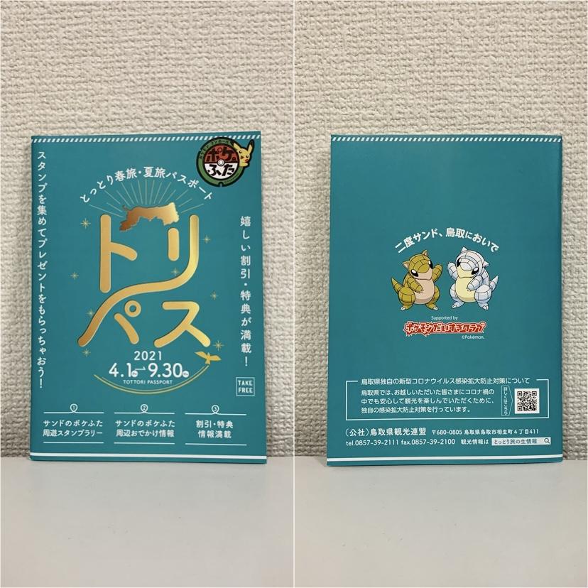 f:id:pikachu_pcn:20210404201523j:plain