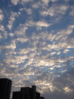 f:id:pikasasa105:20101012164811j:image