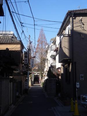 f:id:pikasasa105:20110105095355j:image