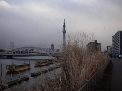 f:id:pikasasa105:20110130155243j:image