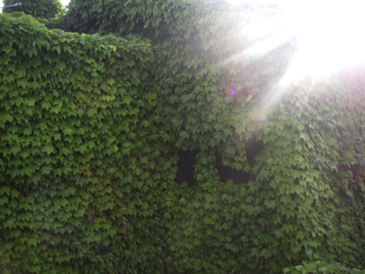 f:id:pikasasa105:20110509170128j:image