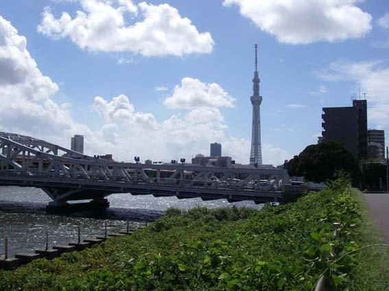 f:id:pikasasa105:20120918104616j:image