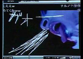 f:id:pikayan:20100219221323j:image:w136:h96