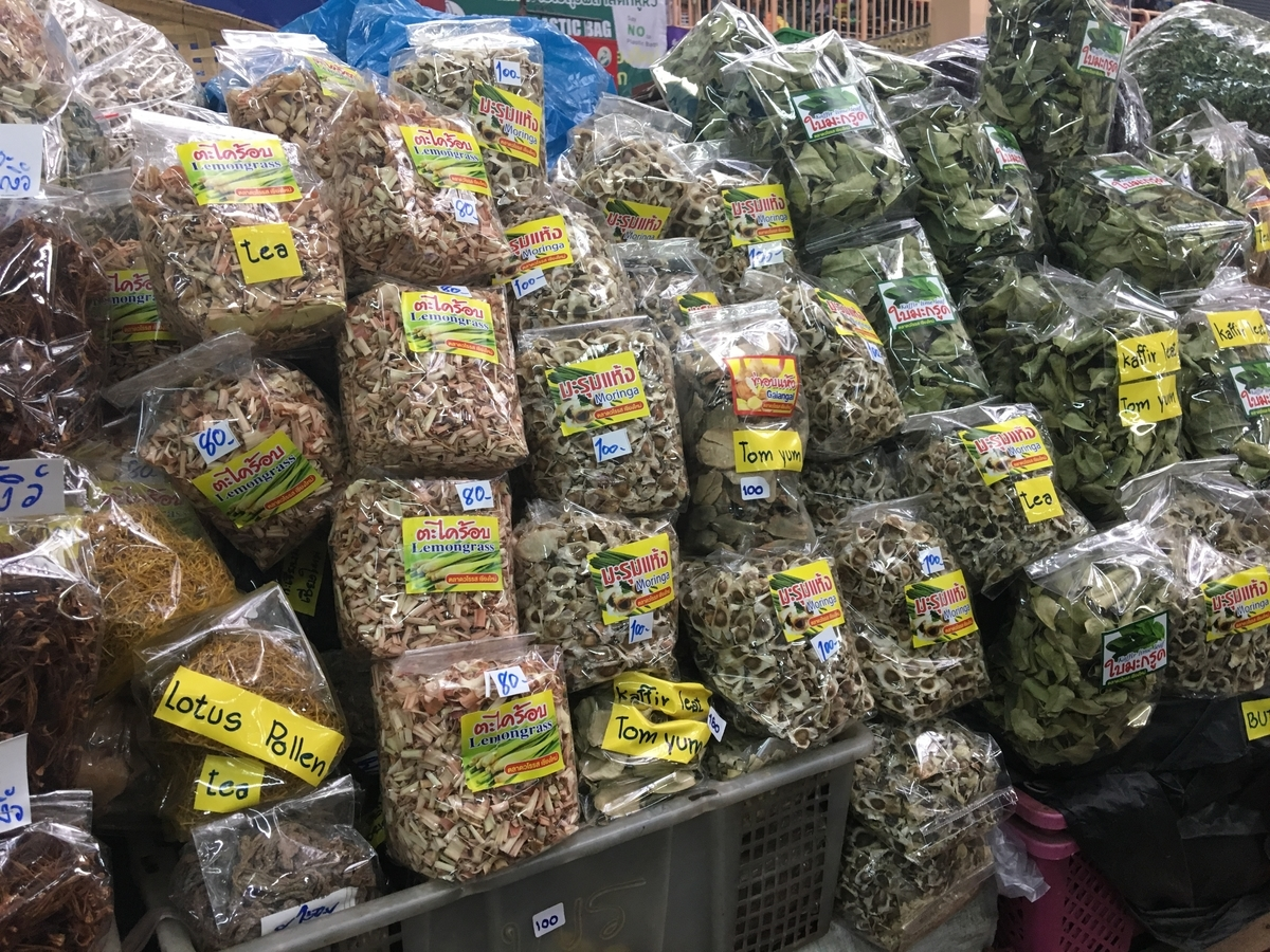 Moringa seeds for sale in Thailand