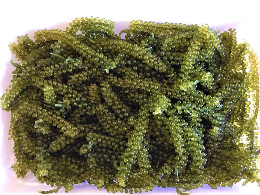green caviar 3