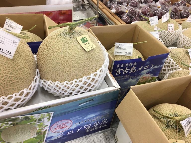 Miyakojima Melon