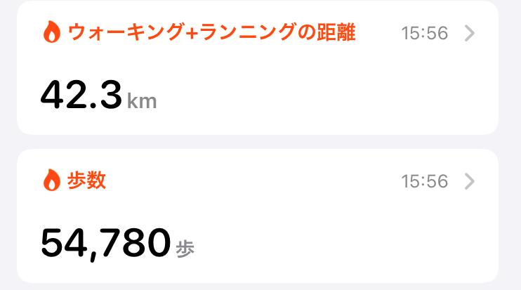 f:id:pin-mile:20210327170848p:plain