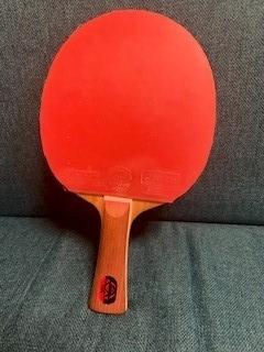 f:id:pingpong-law:20190614212022j:plain
