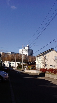 f:id:pink_ao:20081111120656j:image