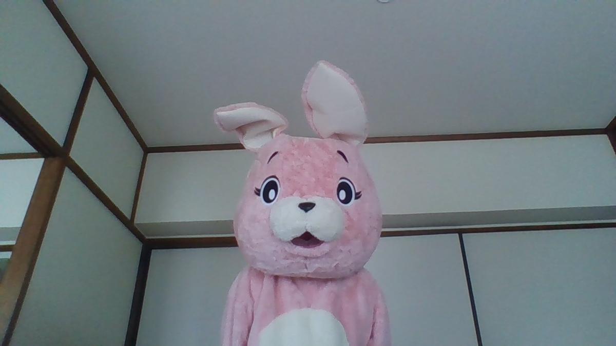 f:id:pinkchanusagi:20200529142247j:plain