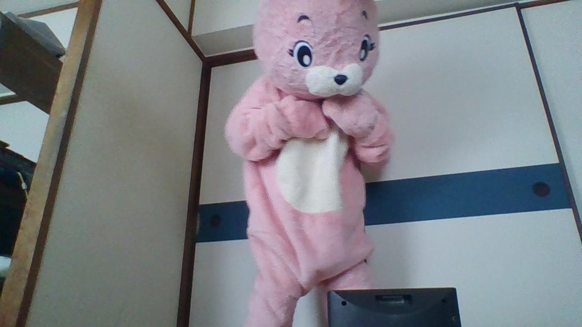 f:id:pinkchanusagi:20200705173107j:plain