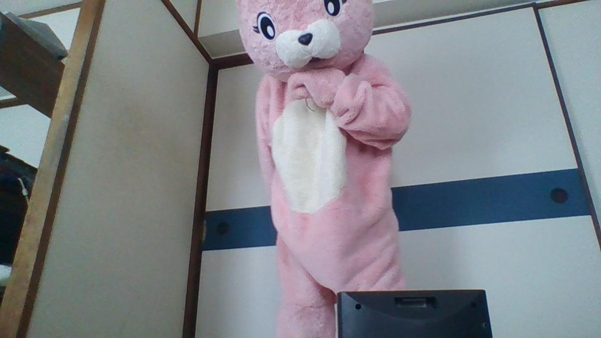 f:id:pinkchanusagi:20200705173644j:plain