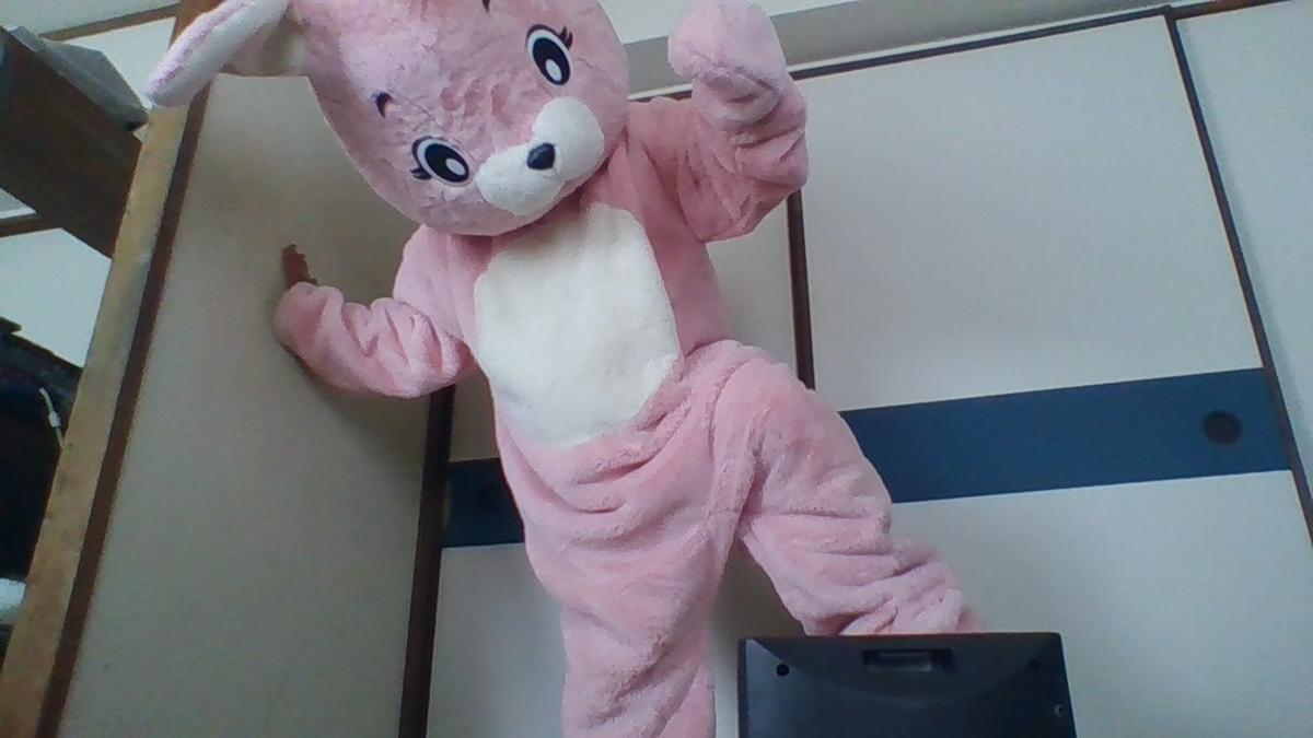 f:id:pinkchanusagi:20200705174140j:plain