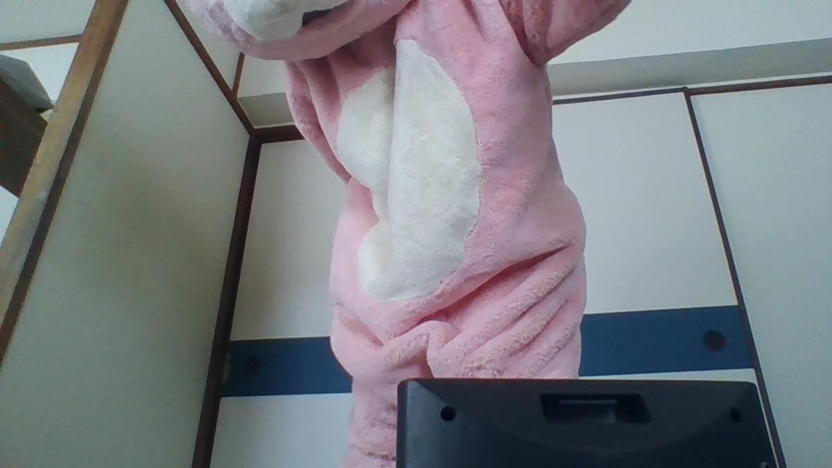 f:id:pinkchanusagi:20200705174924j:plain