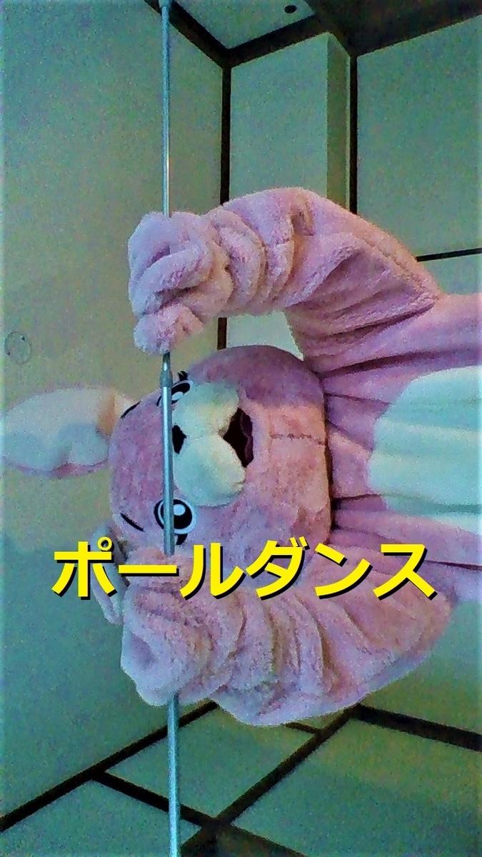 f:id:pinkchanusagi:20200923073716j:plain