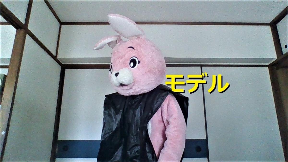 f:id:pinkchanusagi:20200930234825j:plain