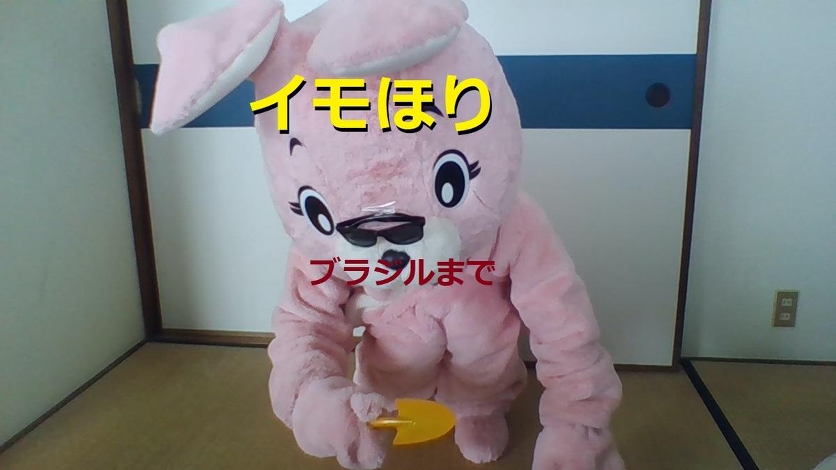 f:id:pinkchanusagi:20201005204522j:plain
