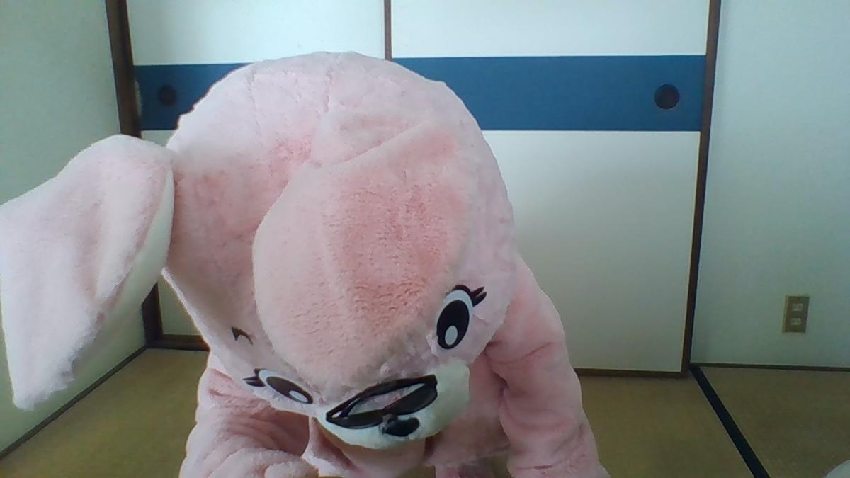 f:id:pinkchanusagi:20201009095044j:plain