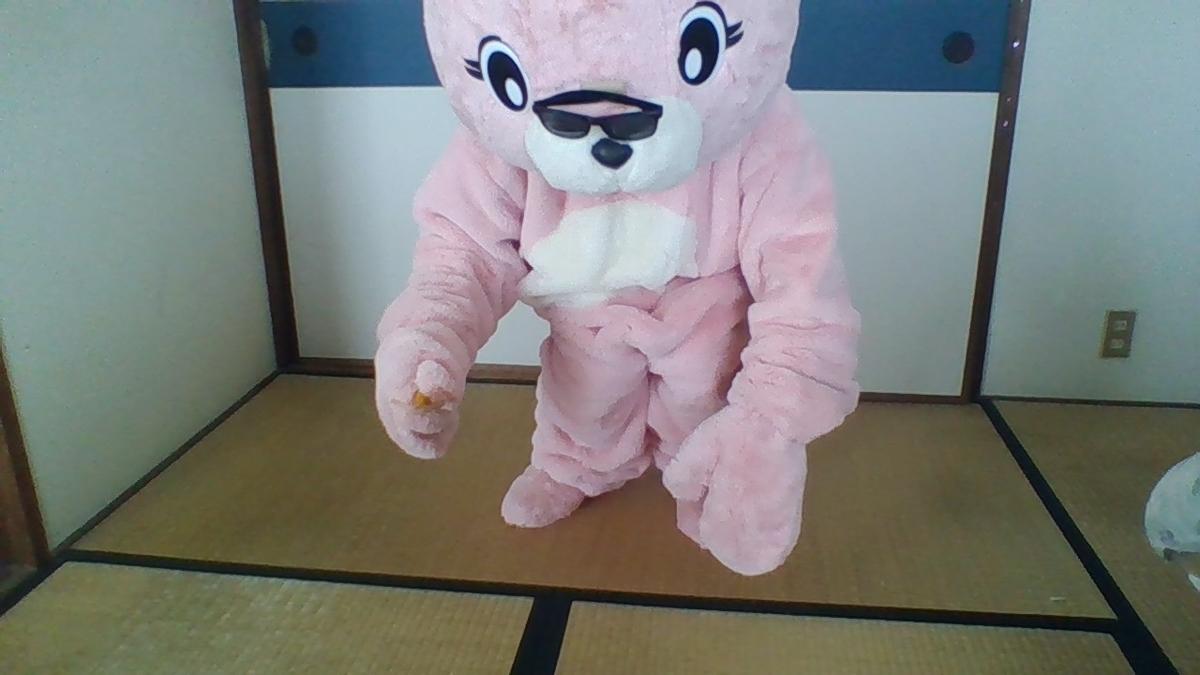 f:id:pinkchanusagi:20201009095237j:plain