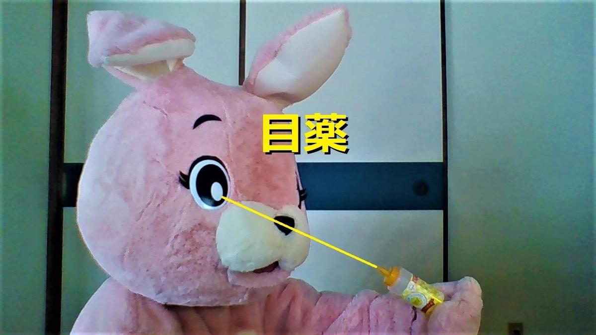 f:id:pinkchanusagi:20201019183317j:plain