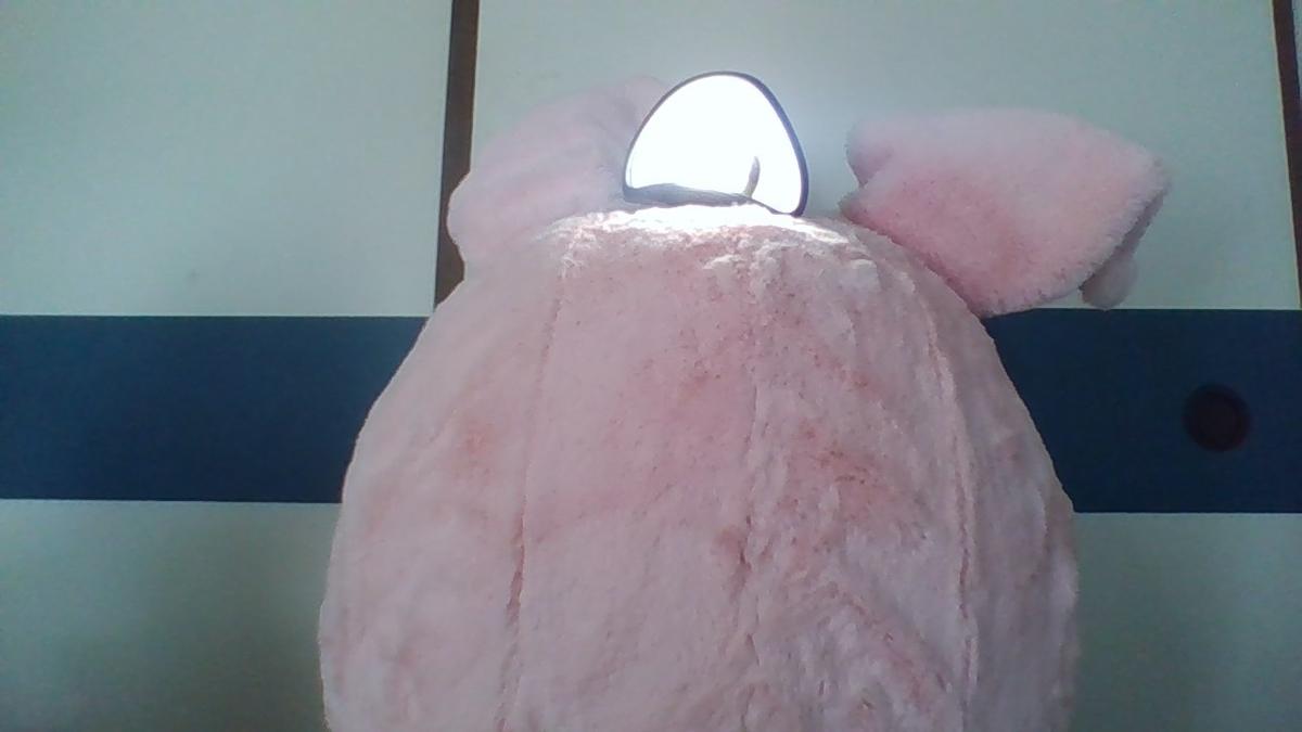 f:id:pinkchanusagi:20201027225237j:plain
