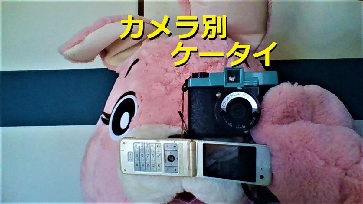 f:id:pinkchanusagi:20201110212106j:plain
