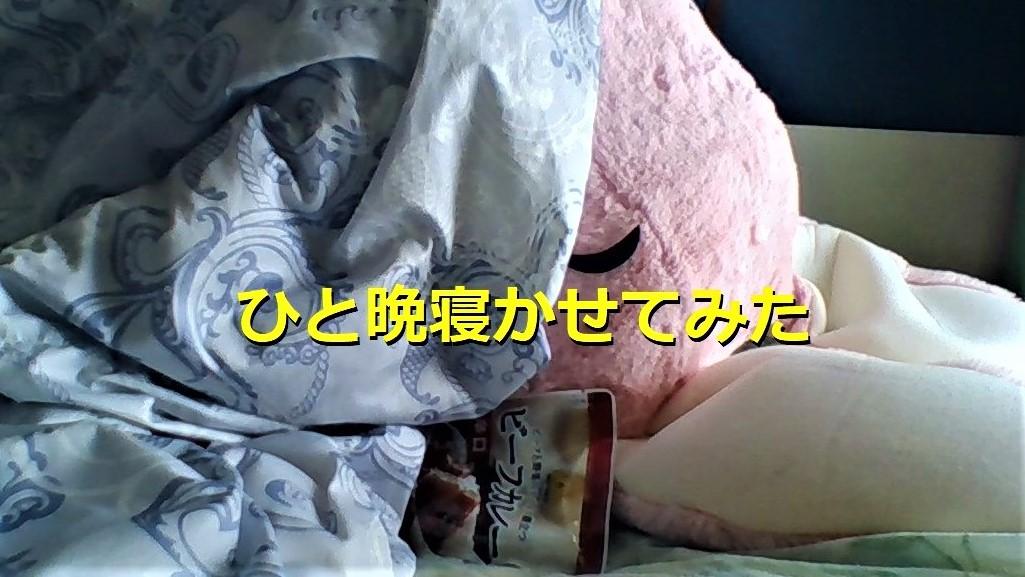 f:id:pinkchanusagi:20201116183129j:plain