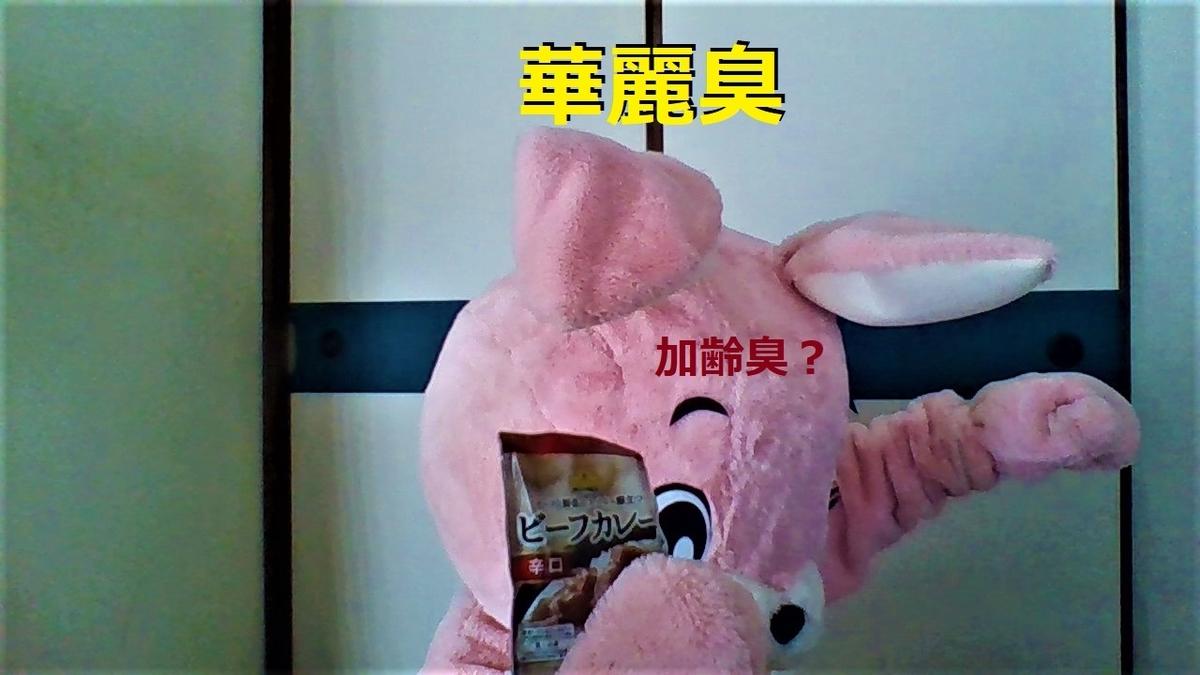 f:id:pinkchanusagi:20201118221822j:plain