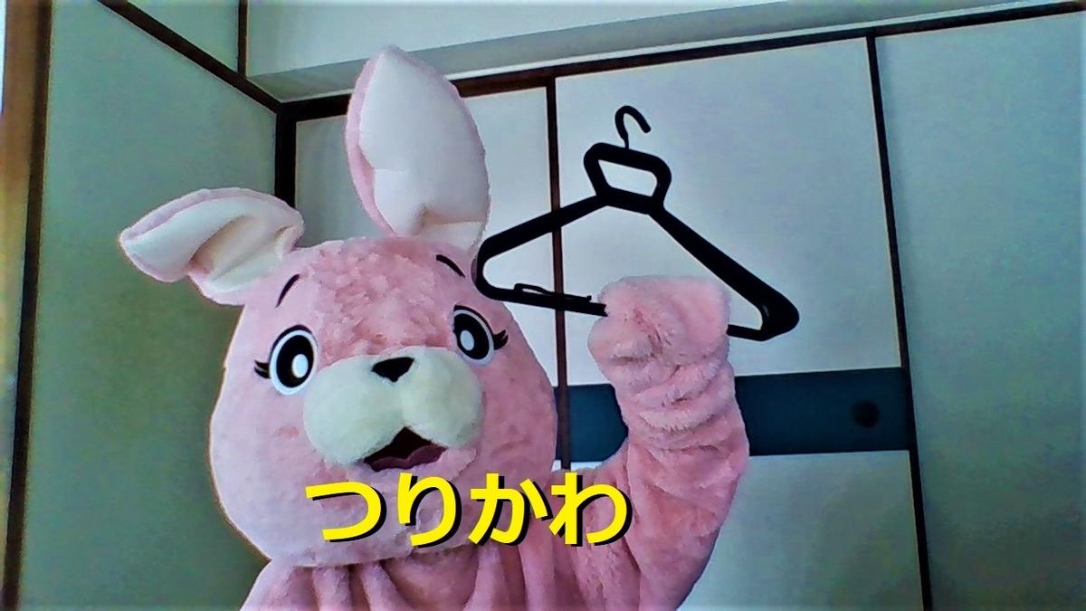 f:id:pinkchanusagi:20201130175620j:plain