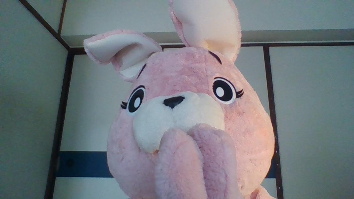 f:id:pinkchanusagi:20201202164015j:plain