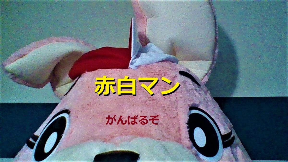 f:id:pinkchanusagi:20201202164302j:plain