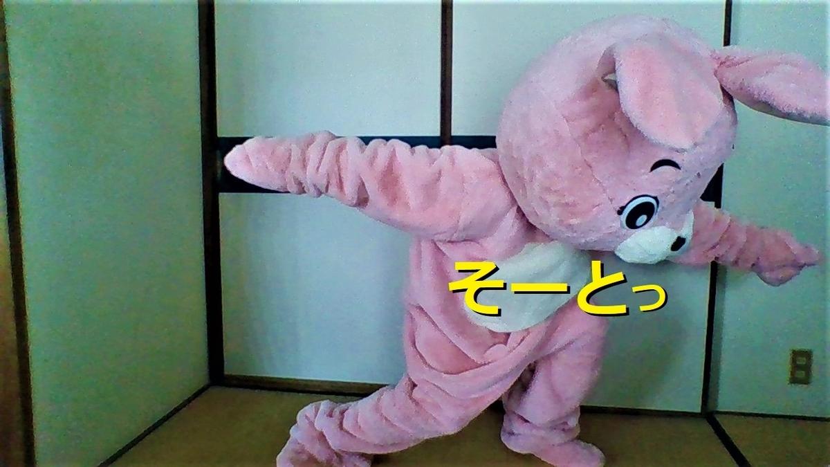 f:id:pinkchanusagi:20201213091218j:plain