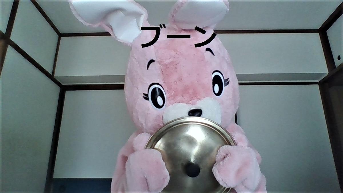 f:id:pinkchanusagi:20201215150113j:plain
