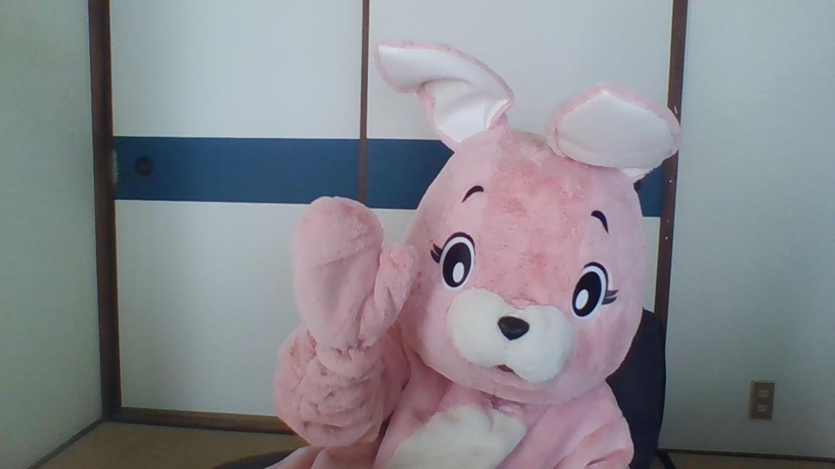 f:id:pinkchanusagi:20201221075549j:plain