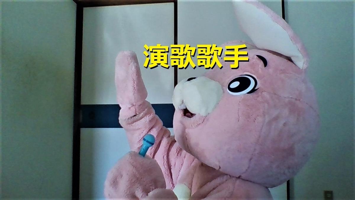 f:id:pinkchanusagi:20201221075859j:plain