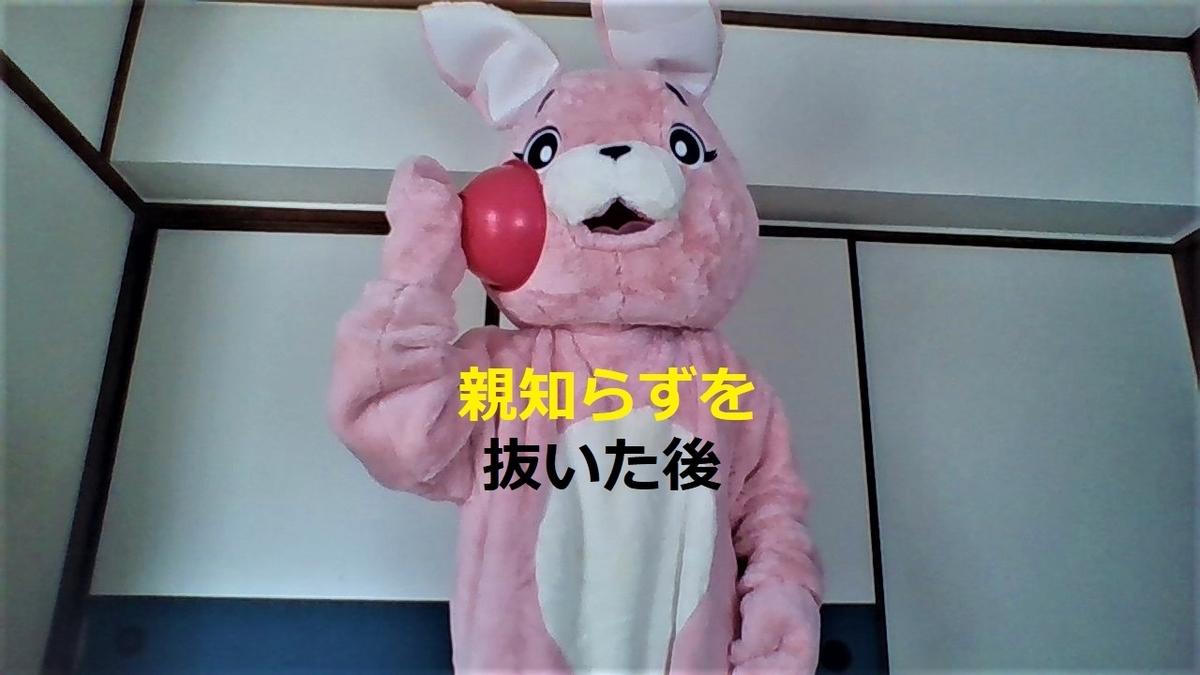 f:id:pinkchanusagi:20210122131109j:plain