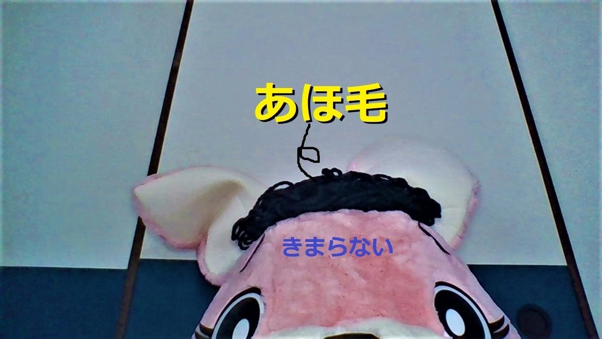 f:id:pinkchanusagi:20210127125431j:plain