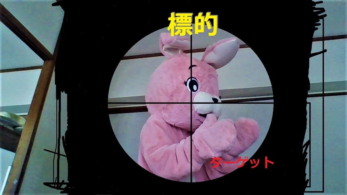 f:id:pinkchanusagi:20210213082107j:plain