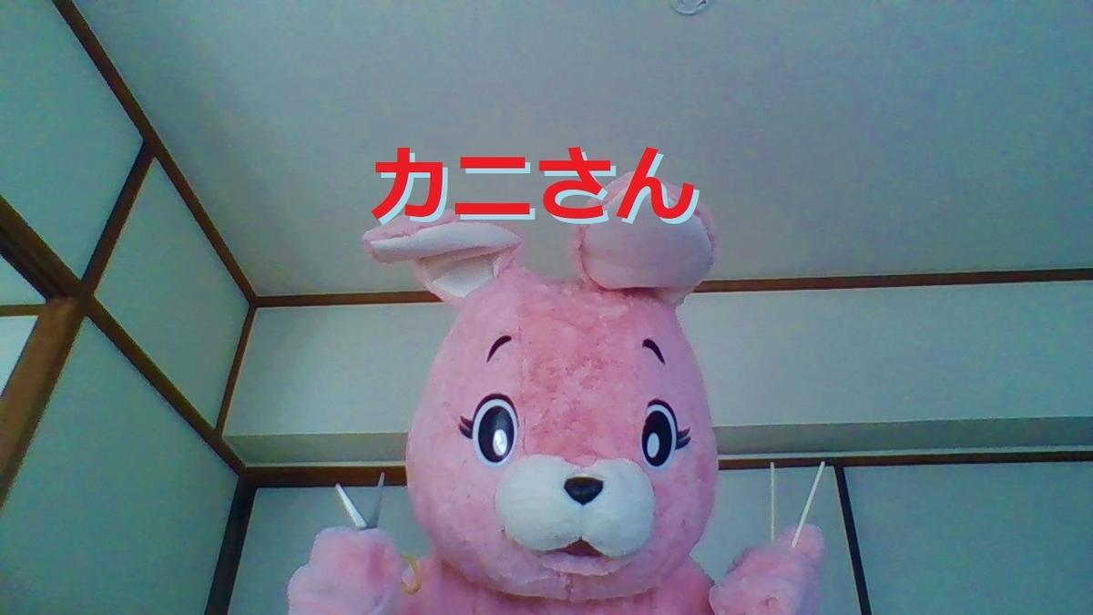 f:id:pinkchanusagi:20210219134534j:plain