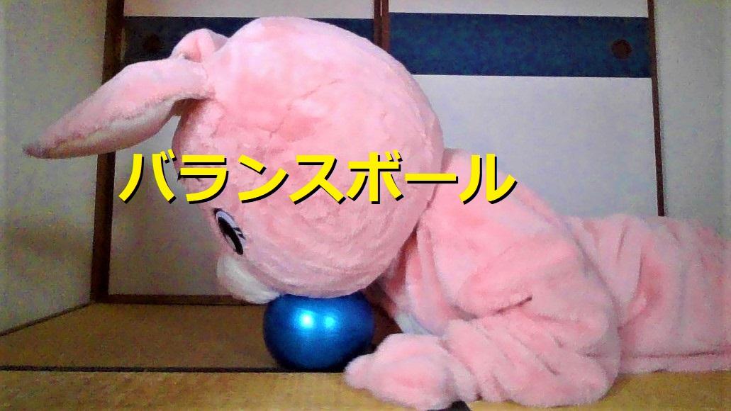 f:id:pinkchanusagi:20210228171927j:plain