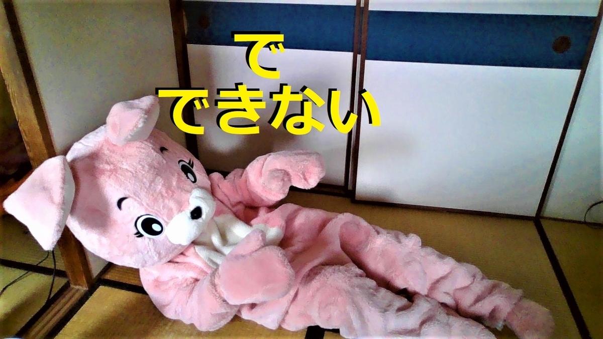 f:id:pinkchanusagi:20210301073858j:plain