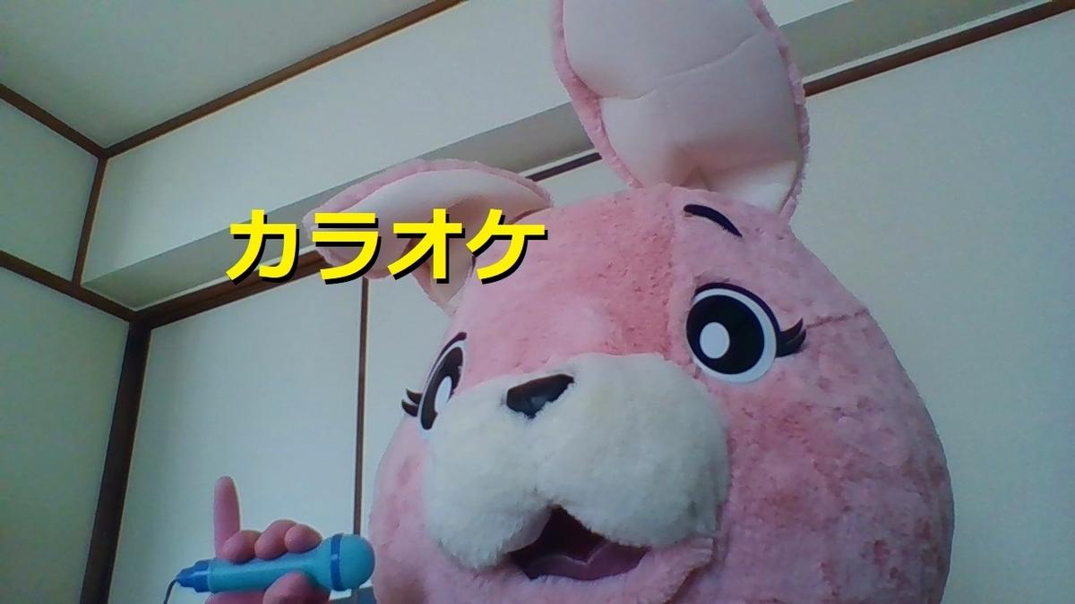 f:id:pinkchanusagi:20210302161049j:plain