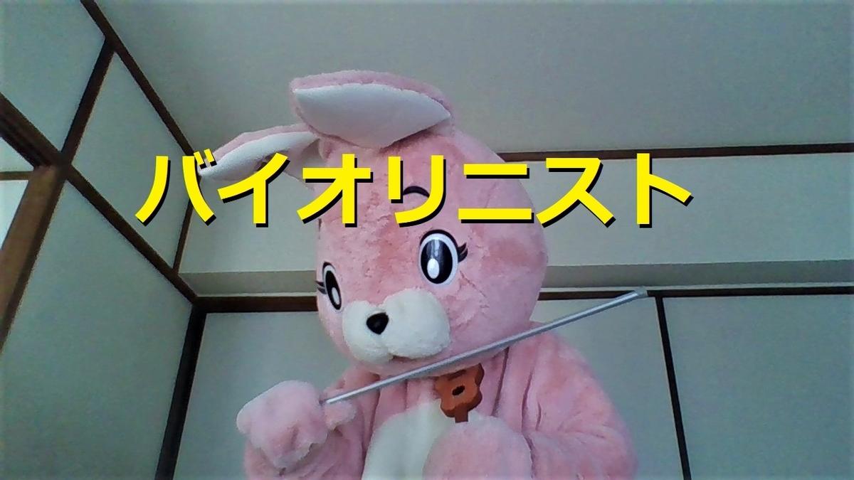 f:id:pinkchanusagi:20210302162419j:plain