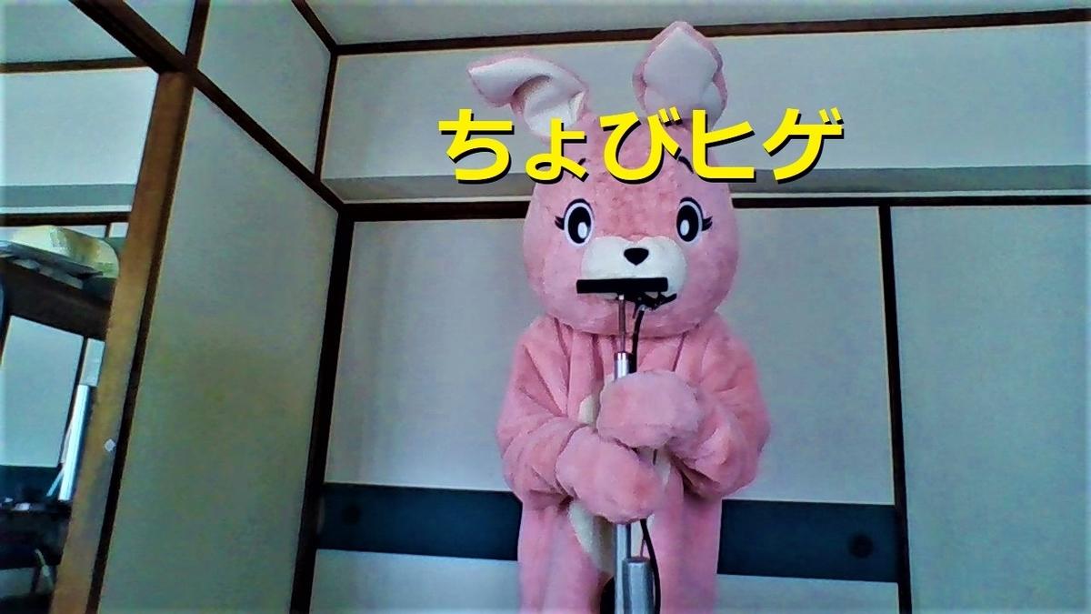 f:id:pinkchanusagi:20210302162817j:plain