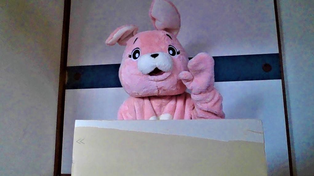 f:id:pinkchanusagi:20210318150959j:plain