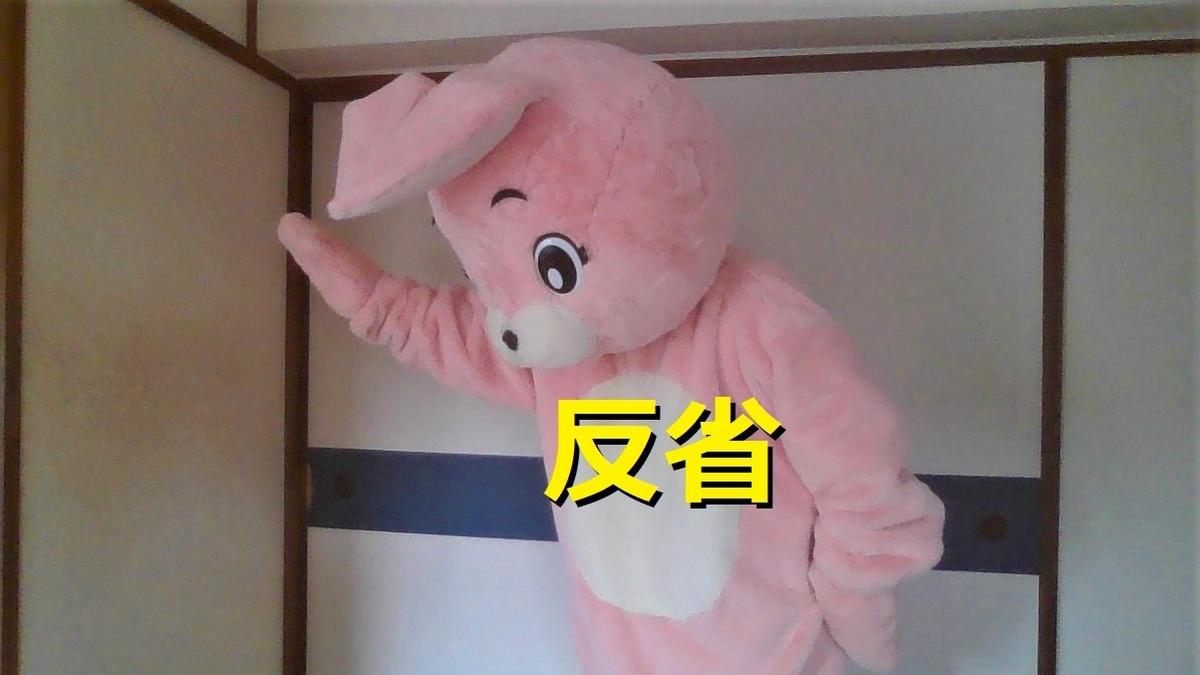 f:id:pinkchanusagi:20210318151110j:plain