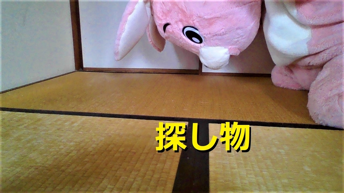 f:id:pinkchanusagi:20210330054813j:plain