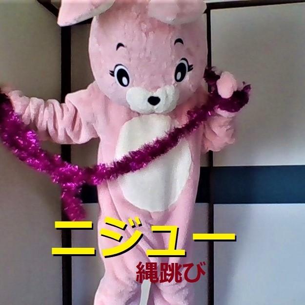 f:id:pinkchanusagi:20210330060621j:plain
