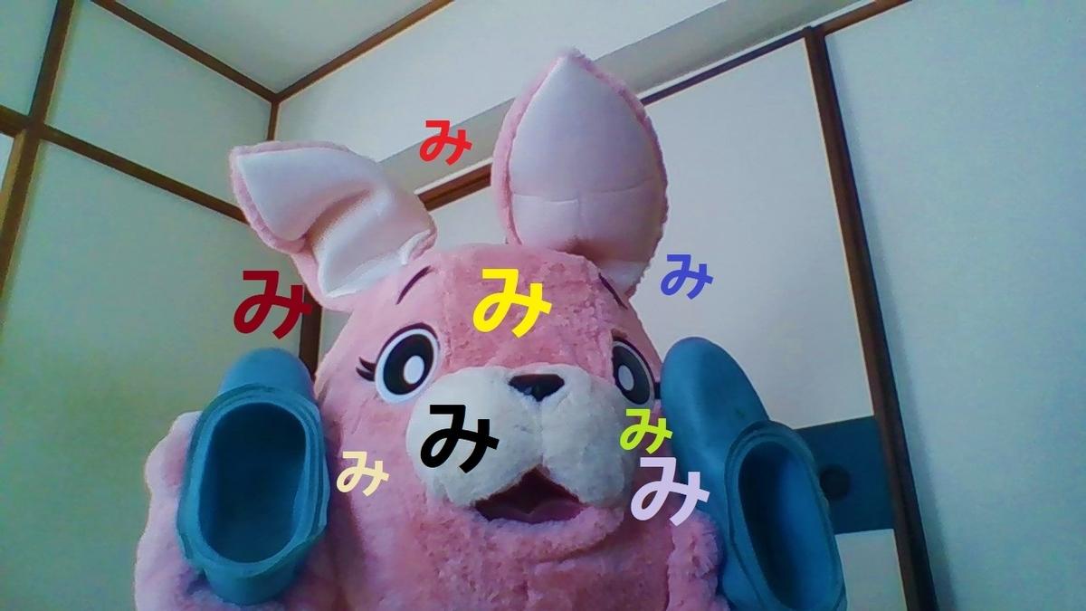 f:id:pinkchanusagi:20210408164646j:plain